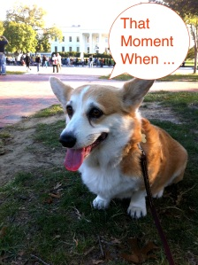 BTMegan's That Moment When ...